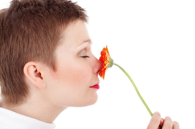 How does the sense of smell works?